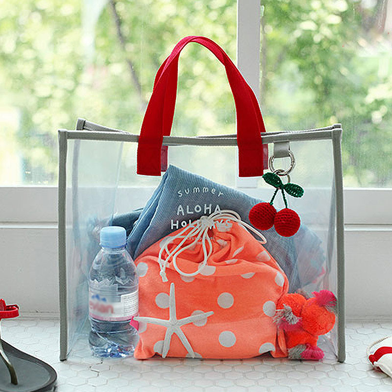 Transparent Travelling Handbag